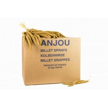 Carton Millet Grappe Jaune