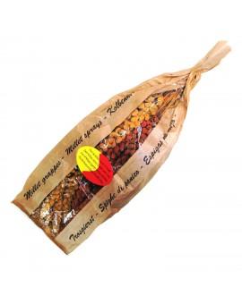 Millet en grappe duo rouge et jaune