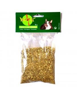 Herbe à chat naturelle 100% bio