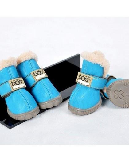 Chaussures pour chien couleur bleue
