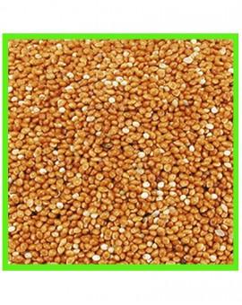 Graines de millet pour oiseaux grande quantité