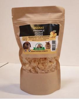 Ananas pour cochons d'inde et lapins Octave Bauchant
