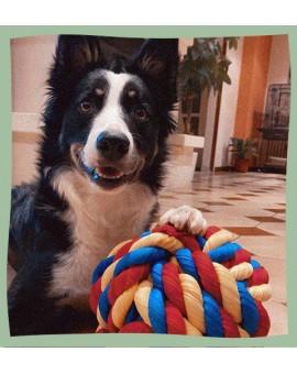 Balle en corde XL pour chien