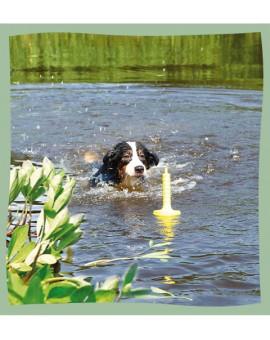 Jouet flottant pour chien MOT-Aqua