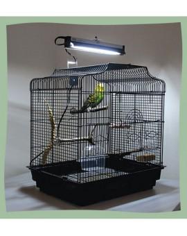 Lampe arcadia pour oiseaux